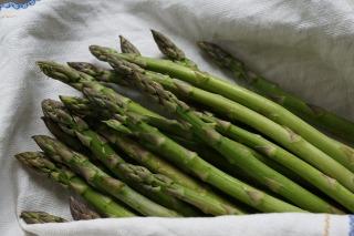asparagus-761223_960_720
